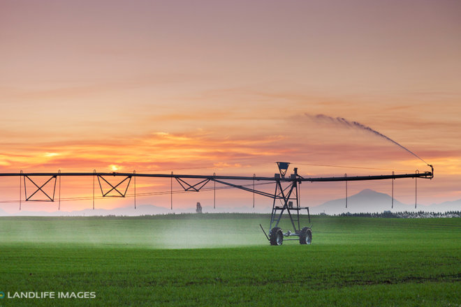 Center Pivot irrigator at sunset, Mid-Canterbury, New Zealand
