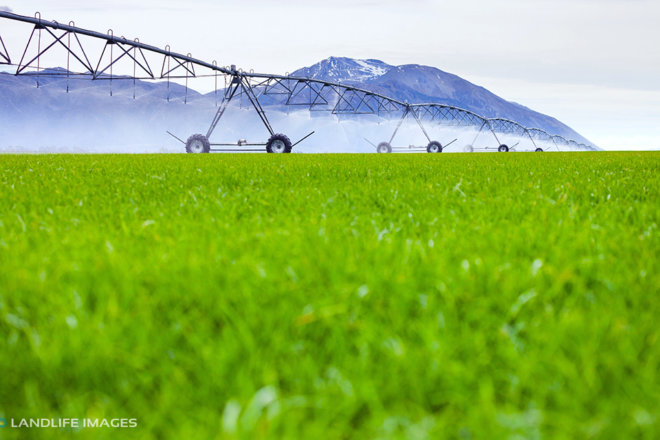 Centre pivot irrigator watering grass, Methven, New Zealand