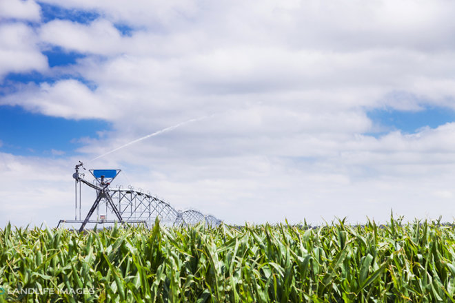 Centre pivot irrigator at work, Mid-Canterbury, New Zealand