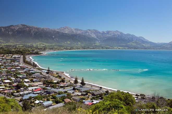 Summer view of Kaikoura