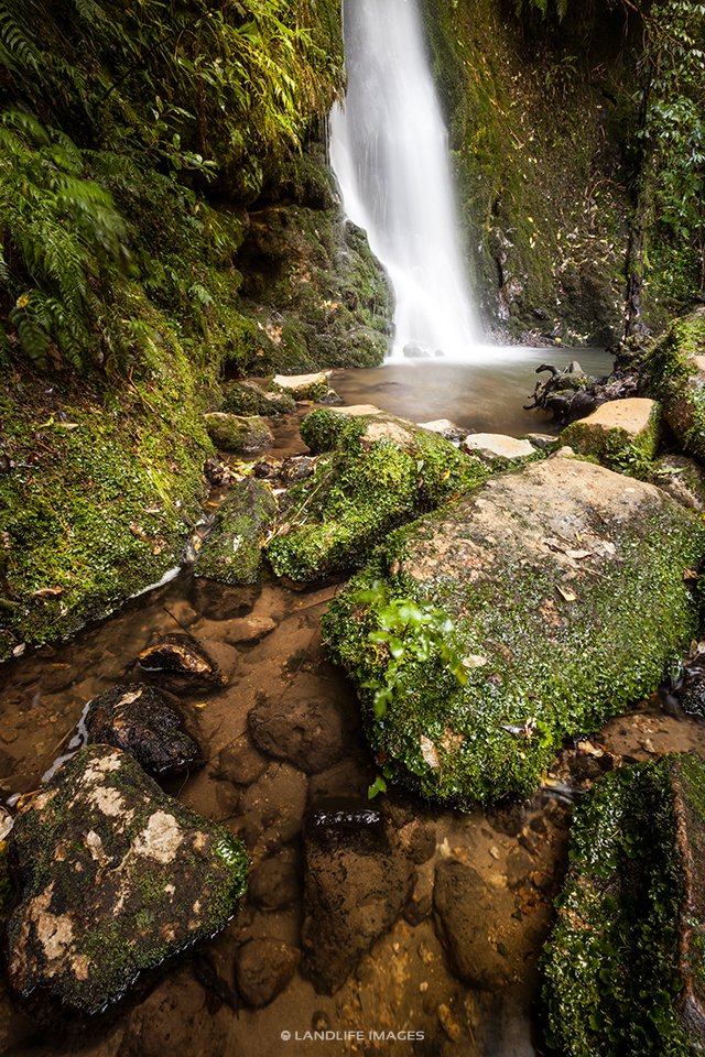 Waterfall in Mclaren Falls Park, Tauranga, New Zealand