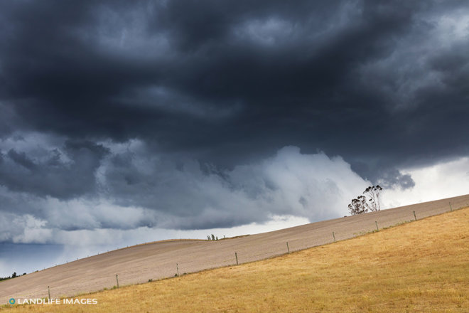 Stormy Farm Scenes, Mackenzie, New Zealand