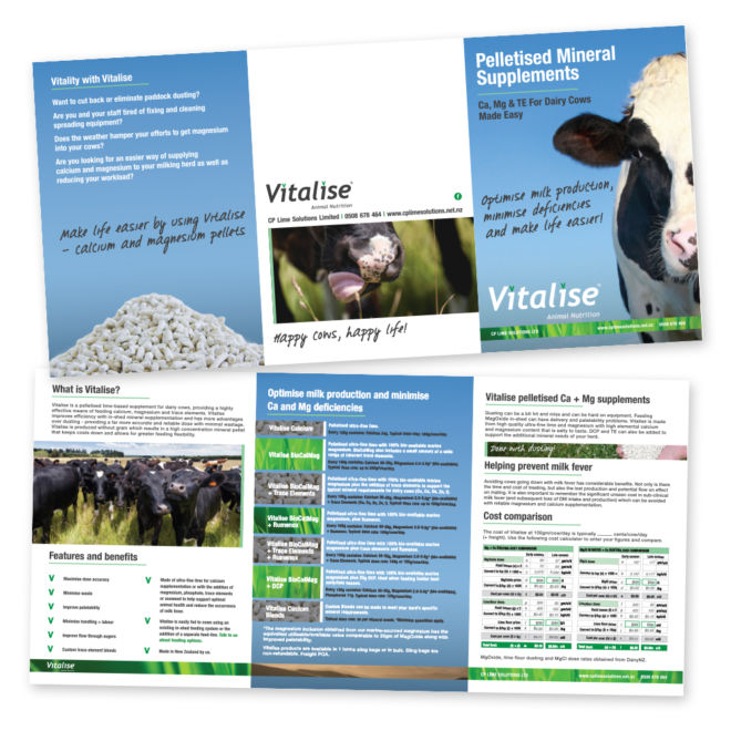 CP Lime Solutions Vitalise A5 6 Panel Brochure
