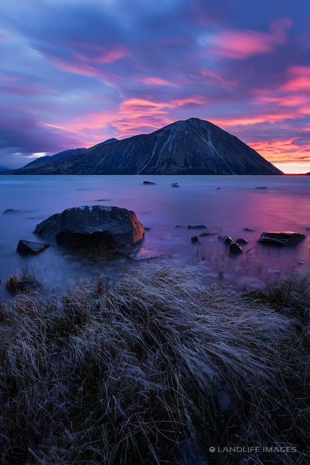 Lake Ohau Sunrise with Tussock Foreground, Portrait