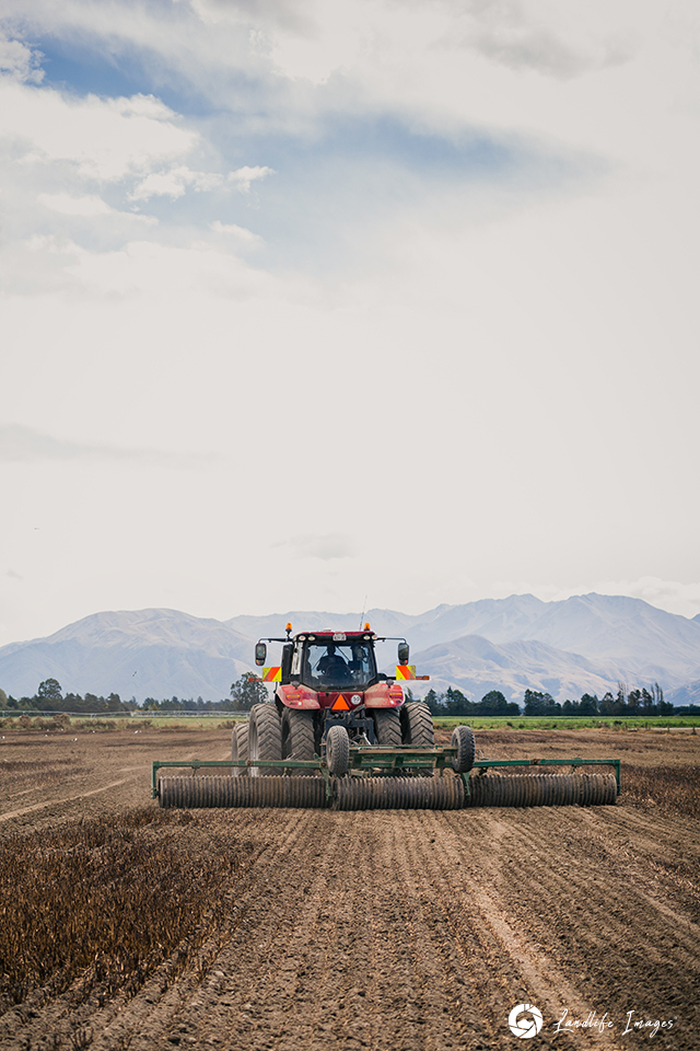 Paddock rolling, Methven, Canterbury, New Zealand