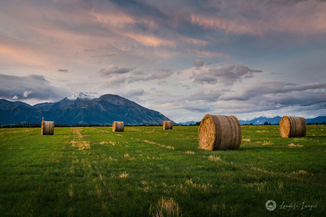 Haybale paddock at sunset leading towards Mt Hutt, Methven, Canterbury, New Zealand