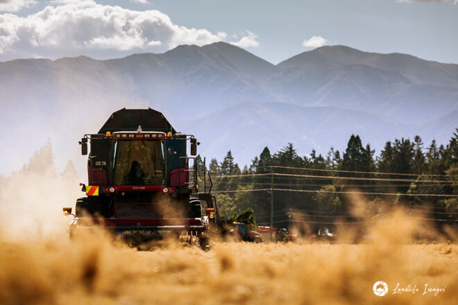 Harvester harvesting brown top with mountain backdrop, Methven, Canterbury, New Zealand