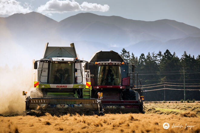 Two harvesters side by side harvesting brown top with mountain backdrop, Methven, Canterbury, New Zealand