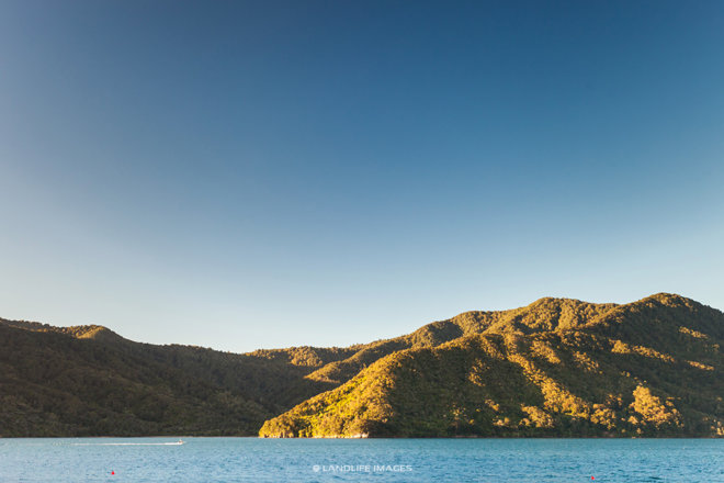 Last light in the Marlborough Sounds