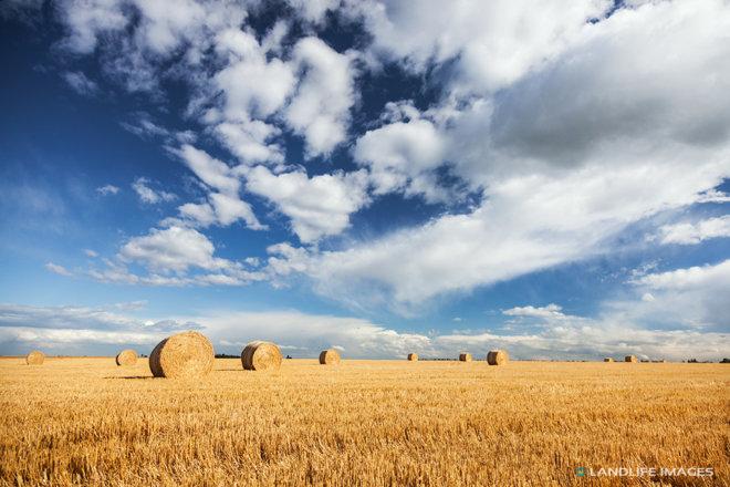 Freshly baled hay, Methven, New Zealand