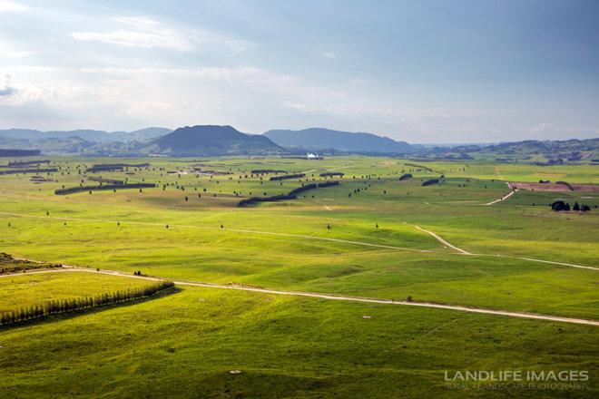 landlife-TG-6216