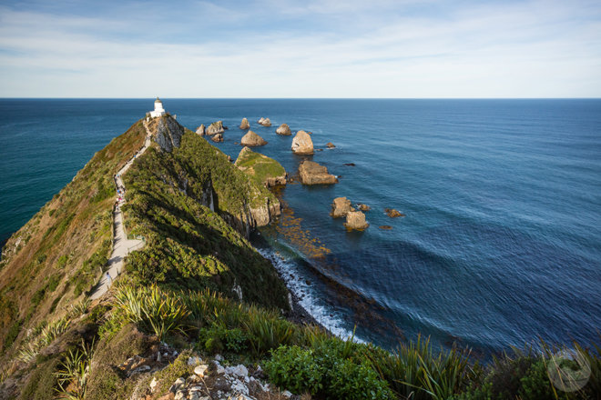 Nugget Point Lighthouse, landscape, Catlins, Southland, New Zealand