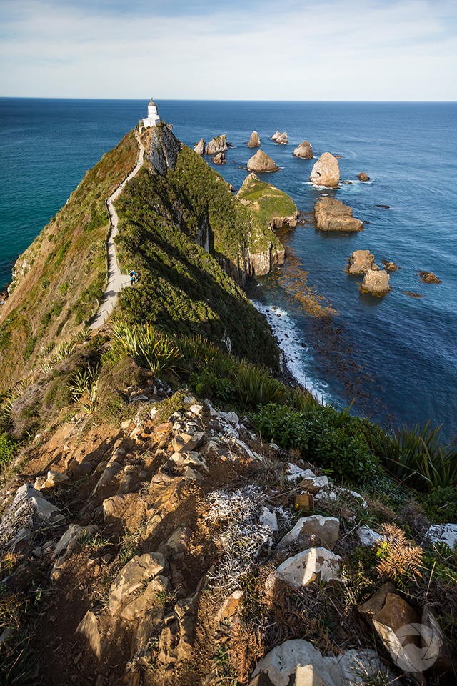 Nugget Point Lighthouse, portrait, Catlins, Southland, New Zealand