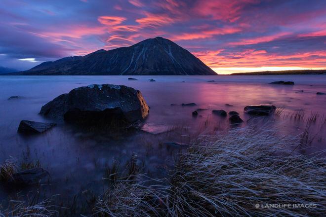 Lake Ohau Sunrise with Tussock Foreground, Landscape