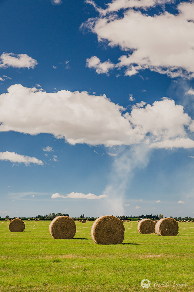 Haybales and blue sky, New Zealand