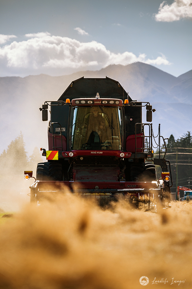 Harvester harvesting brown top with mountain backdrop, Methven, Canterbury, New Zealand - portrait dimensions
