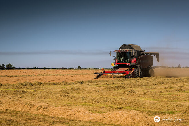 Harvester harvesting brown top, Methven, Canterbury, New Zealand