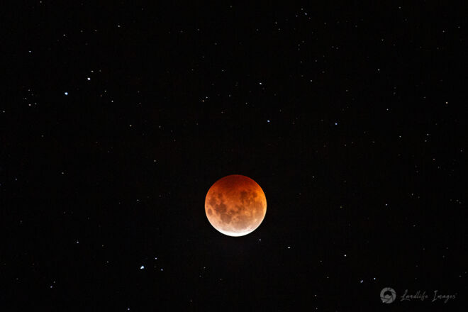 Super Flower Blood Moon Eclipse, 26 May 2021